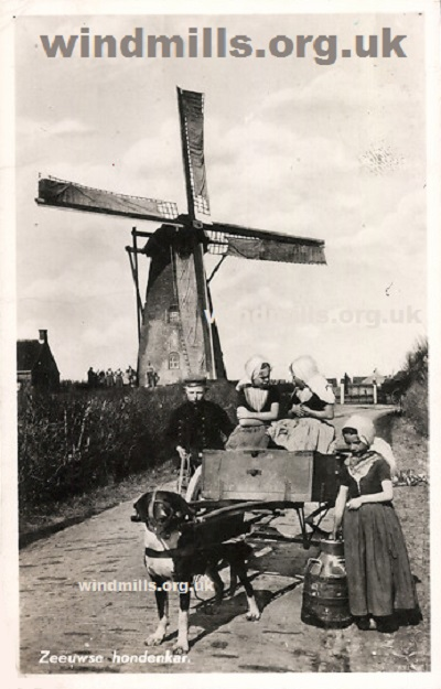 windmill dog cart holland